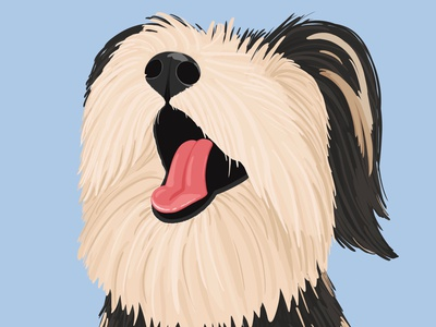 Happy-go-lucky pet doggy dog illustrator illustration design artwork art