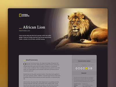 Panthera Leo — National Geographic wikipedia information yellow layout article lion ux ui typography