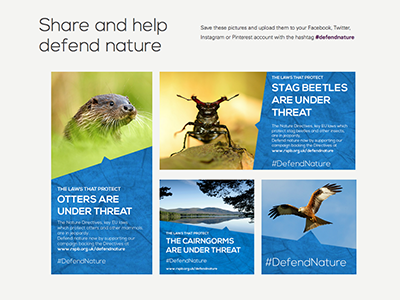 Defend Nature texture campaign rspb nature blue nexa bold nexa light