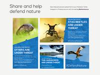 Defend Nature