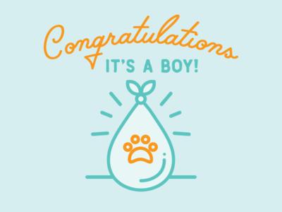 Congrats, it's a cat!