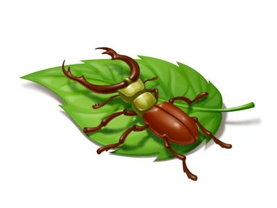 Exploring bugs gameart family bug explorer adventure 2d illustration