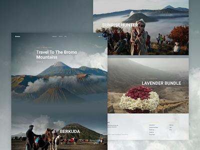 Bromo Mountain Website ecommerce vector logo app ux mountain ui ux rebound peaceful website illustration mobile branding ui design