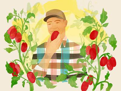 T Brand Studio food farmer tomatoes tomato farm editorial illustration