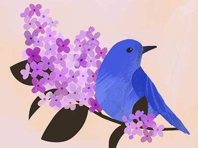 Idaho State Bird & Flower painterly botany illustration idaho state bird syringa lilac boise bluebird