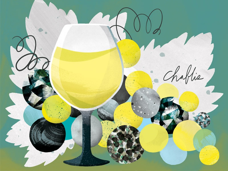 Chablis Wine illustration mineral grapes glass french chablis wine
