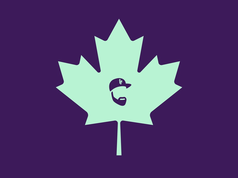 WE THE NORTH! toronto canada design animation motion frametouch
