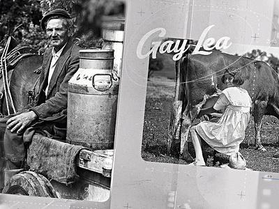 Gay Lea   Style Frame 01 kodak projector texture photocopy vintage old reflection polaroid grain history