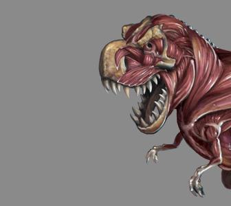 Dinobot layers2