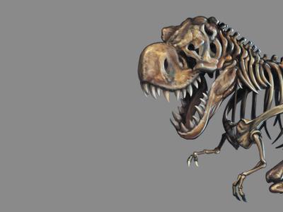 Dinobot layers