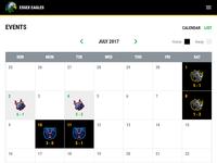 Team Calendar