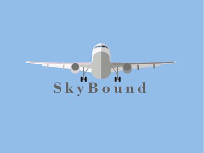 Airline Logo vector flat logo design branding