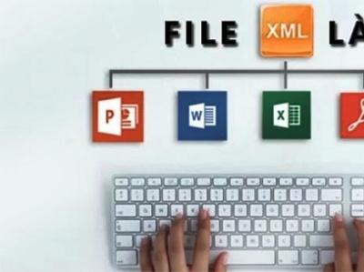 File XML la gi