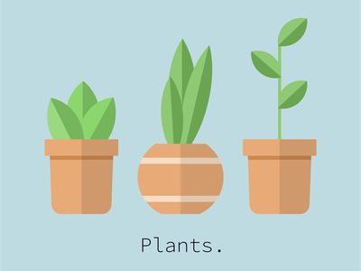 PLANTS. illustrator adobe illustrator vectorart vectorillustration branding artist logo digital illustration digitalart art graphic designer design digitalartist graphic design illustration vector