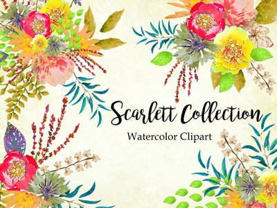 Scarlett Collection design watercolor illustration watercolor flower watercolor flowers watercolor florals printables wedding design watercolor illustration instant download png