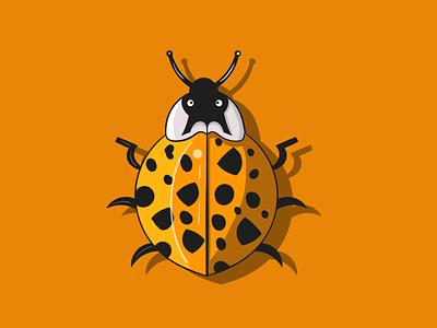 lady bug design illustration 2d adobe illustrator