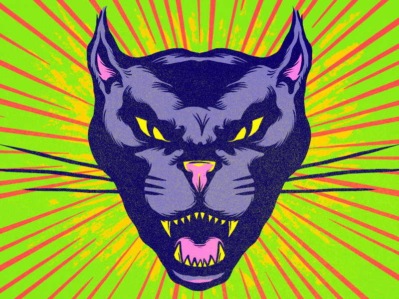 Panther panther retro cat illustration drawing starburst animal vintage
