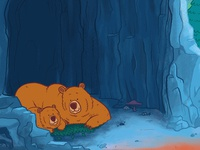 Wild About Bears Illustrations - Cave