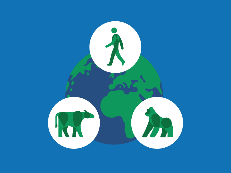 Wildlife Health Spot Rework environment conservation nature earth diagram person gorilla cow vector illustration health wildlife
