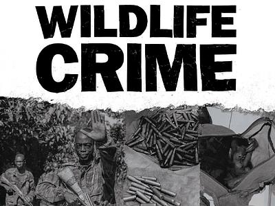 Wildlife Crime Brochure & Typography print texture diy dark gritty type typography brochure wildlife crime