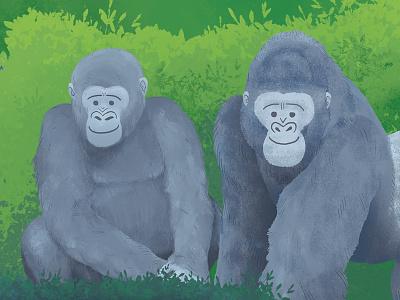 Wild About Gorillas children kids green jungle forest invitation drawing monkey ape illustration gorilla