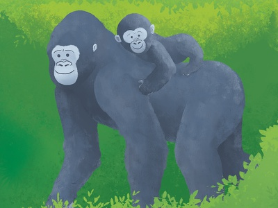Gorilla Family kid children wild monkey ape mammal animal jungle drawing illustration gorilla gorillas