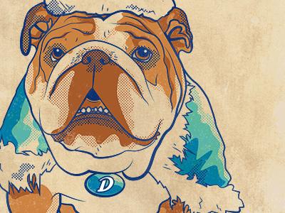Porterhouse Poster WIP drake university illustration vector drawing bulldog poster 4 color screentone style illustrator school