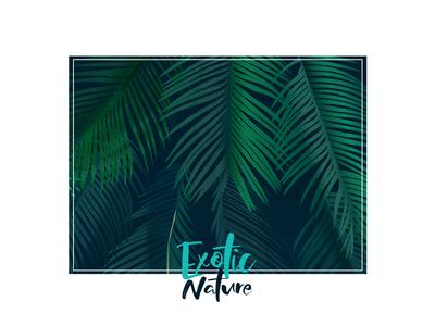 Exotic Nature