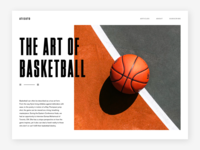 The Art Of Basketball