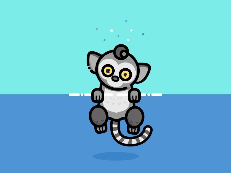 Lemur catta monkey madagascar catta lemur