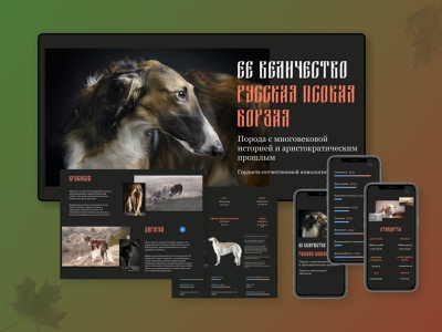 Her Majesty the Russian Greyhound art website ux typography vector ui web design