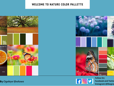 nature color palette design