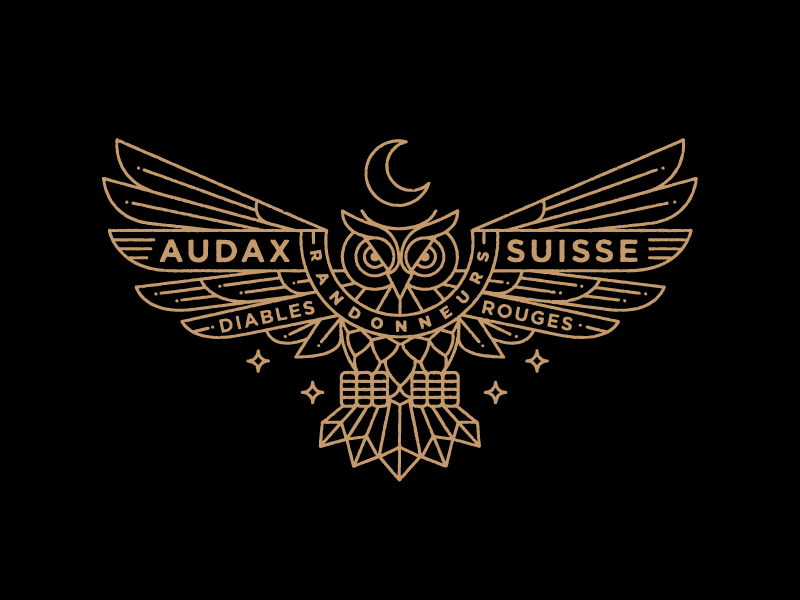 Switzerland Cycling Owl owl mark branding logo illustration night