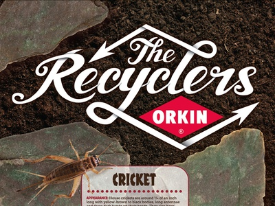 The Recyclers Poster hand-drawn custom-type type typography poster insects