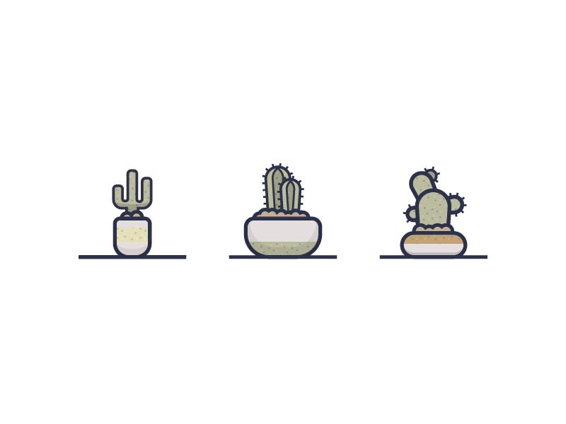 Cacti illustrator illustration plants cactus cacti