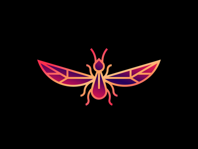 Insect vector minimal line illustration insect bug