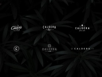 Caldera + Lab Lockups