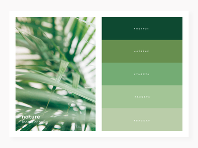 shades of green light nature minimal code color palette shade color green