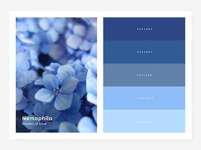 shades of blue shades nature paint design color palette blue