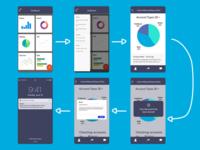 Megaputer (RDSC Project) - Mobile User Flow