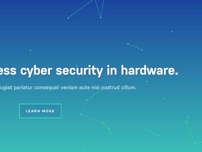 Dover Microsystems Website
