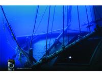 Olympus Camera Shipwreck Ad