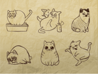 Meow Sketches