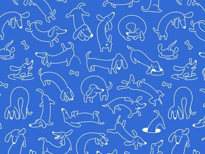 Dachshunds Pattern