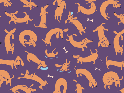 Dachshunds Pattern Variation character pet animal tile seamless texture pattern dachshund breed dog