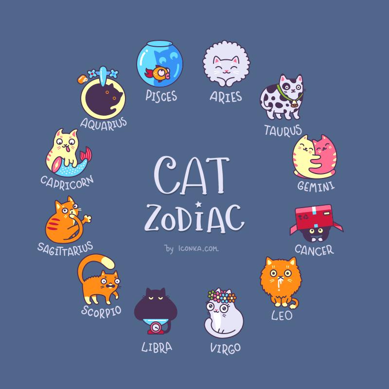 Zodiac dribbble full