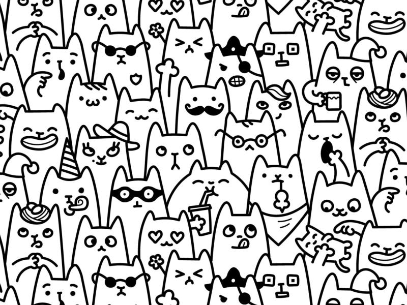 Cat faces dribbble