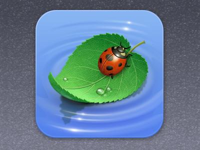 iPool  pool ladybug water road ripple drop leaf nature icon iconka