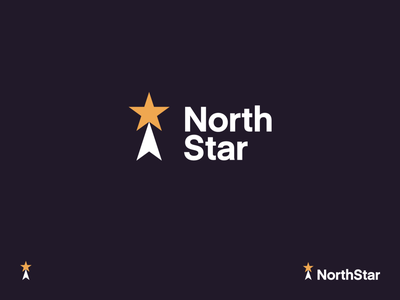 NorthStar compass direction star identity branding brand identity logo