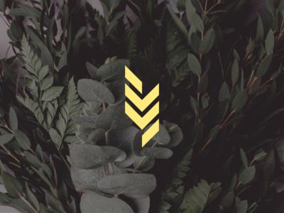 ivy ivy identity flowers florist logo design brand identity brand logo